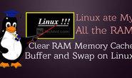 在Linux上如何清除RAM内存高速缓存,缓存和交换空间