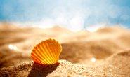 shell 日志分析小工具